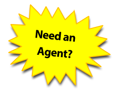 Homes For Sale Real Estate Agent